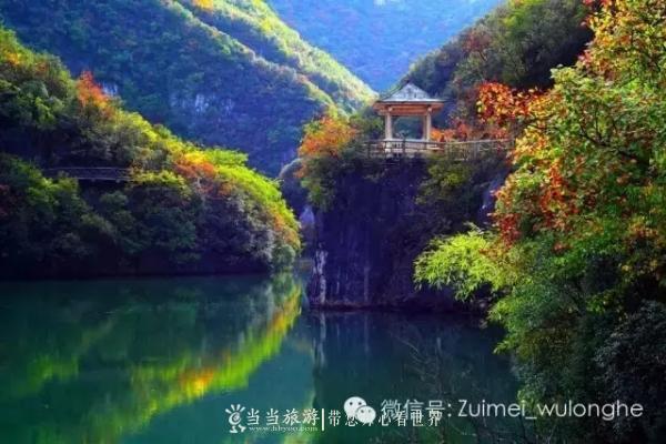 一等奖:《五龙河秋韵》王锦朝-五龙河最美的秋色都藏在这6张照片里