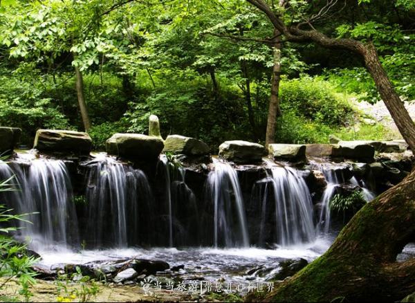 南神道2(来自南神道景区官网).jpg
