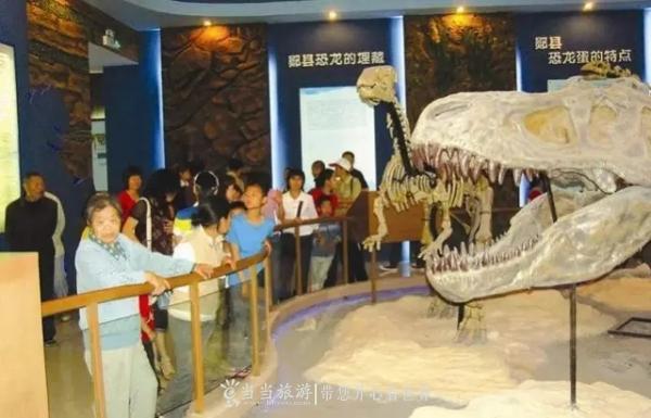 十堰郧阳博物馆