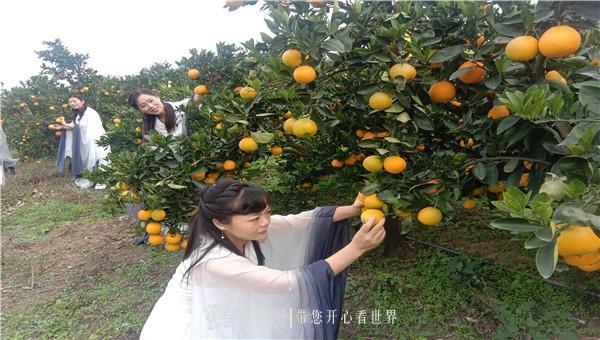 QQ图片20191106103127_副本.jpg