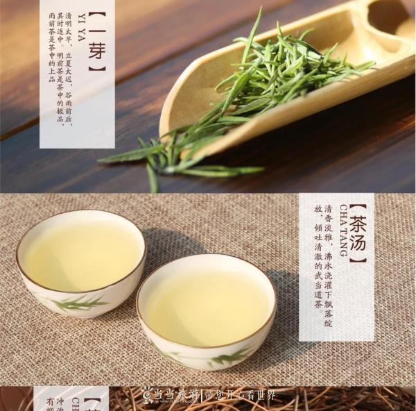 武当道茶.jpg