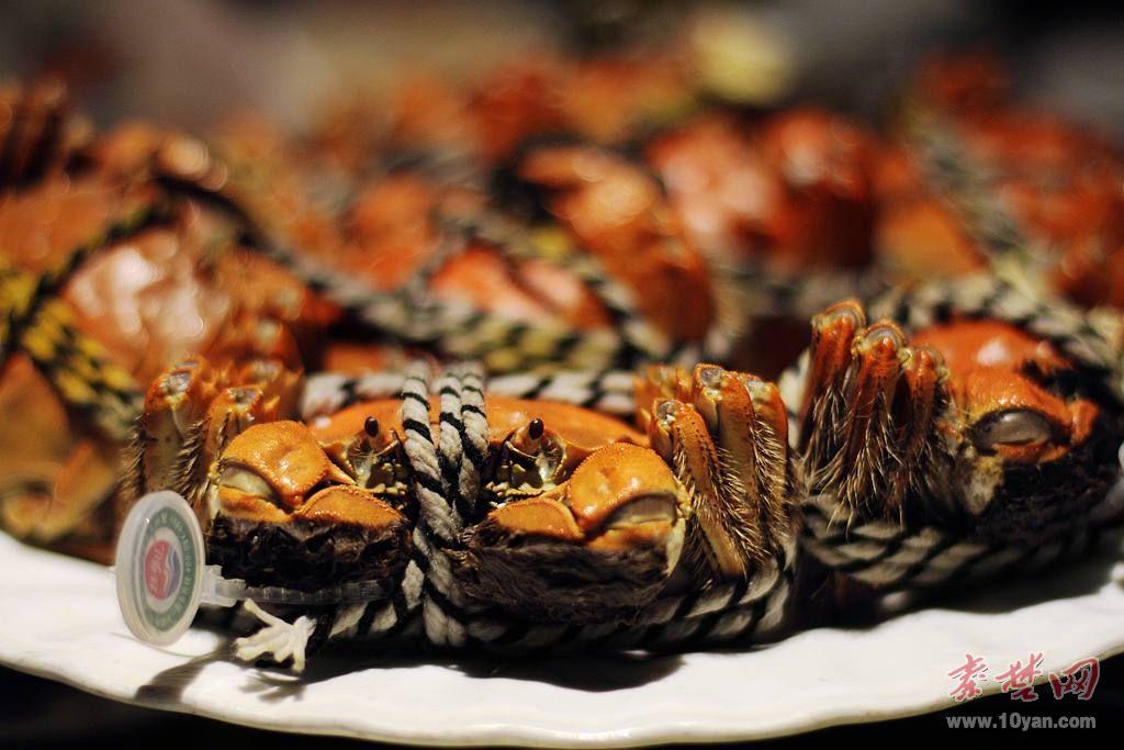 真正的霸王餐,免费品尝正宗阳澄湖大闸蟹!