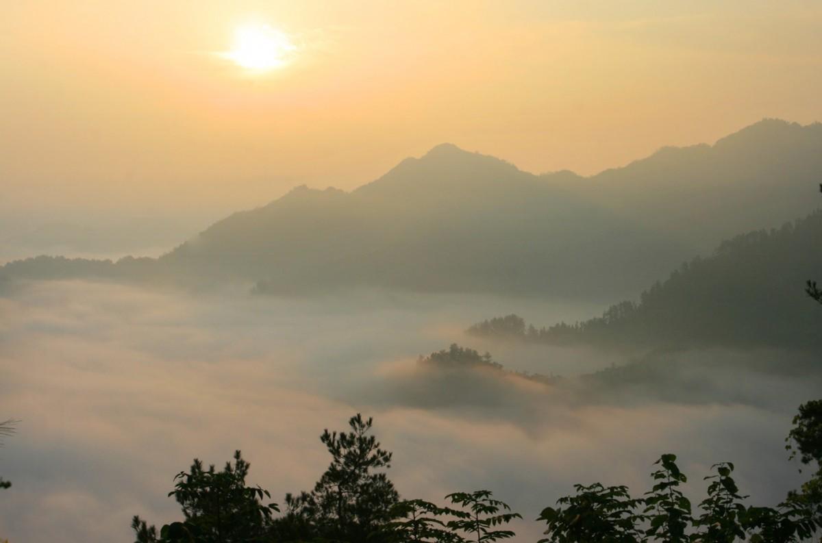 竹溪偏头山森林公园