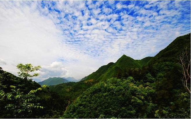 丹江口吕家河民歌村旅游区