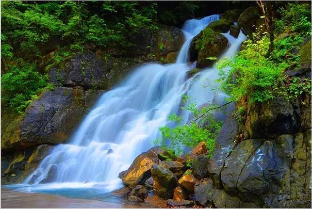 竹溪的小沟,那是养眼修性的地方:满目尽是绿——翠绿,碧绿,绵延不绝