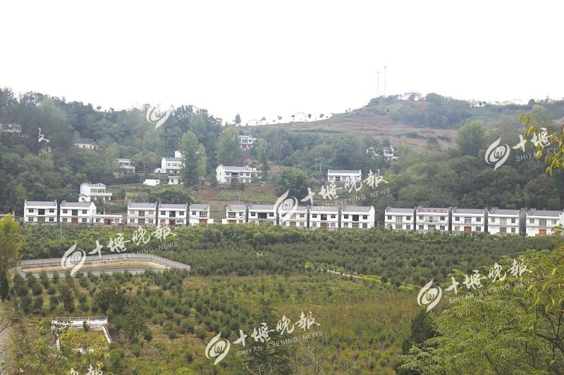 总兵安村打造生态美丽乡村