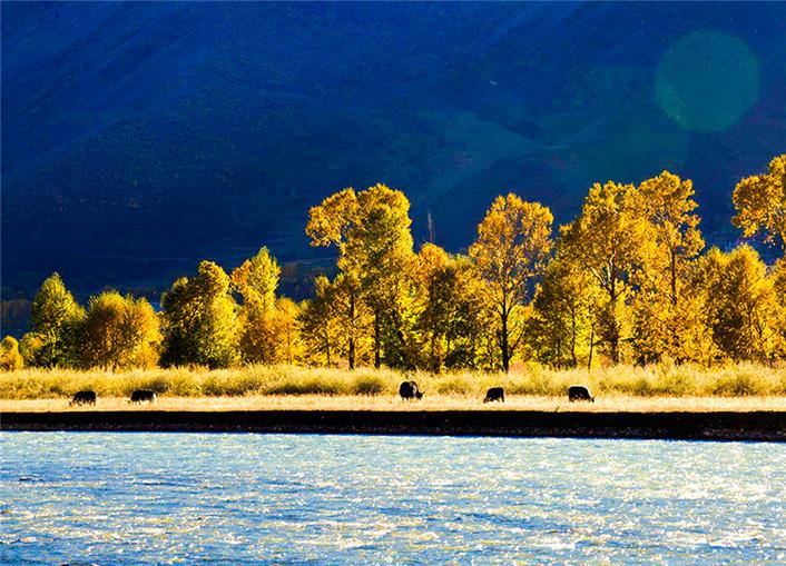 穿行在最美的秋 这7个地方十堰人你一定不要错过