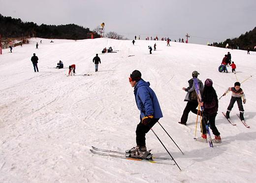 神农架激情森林滑雪(酒壶滑雪场)、温泉(或官门山景区)二日游(初四/六/八发团)