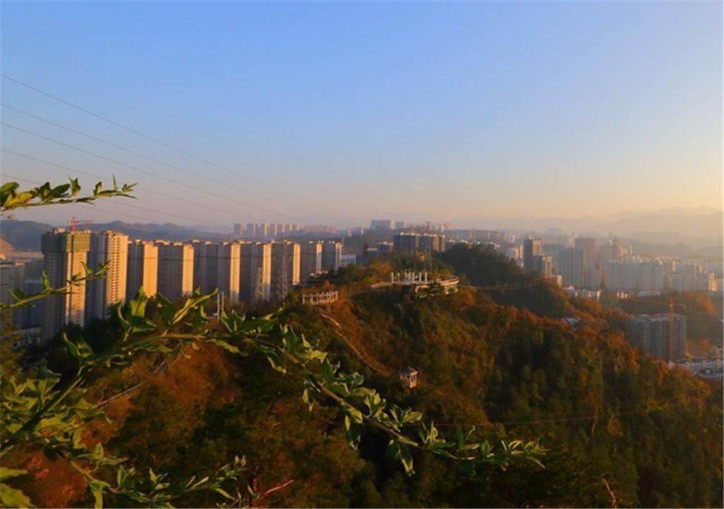 福寿山上望市貌