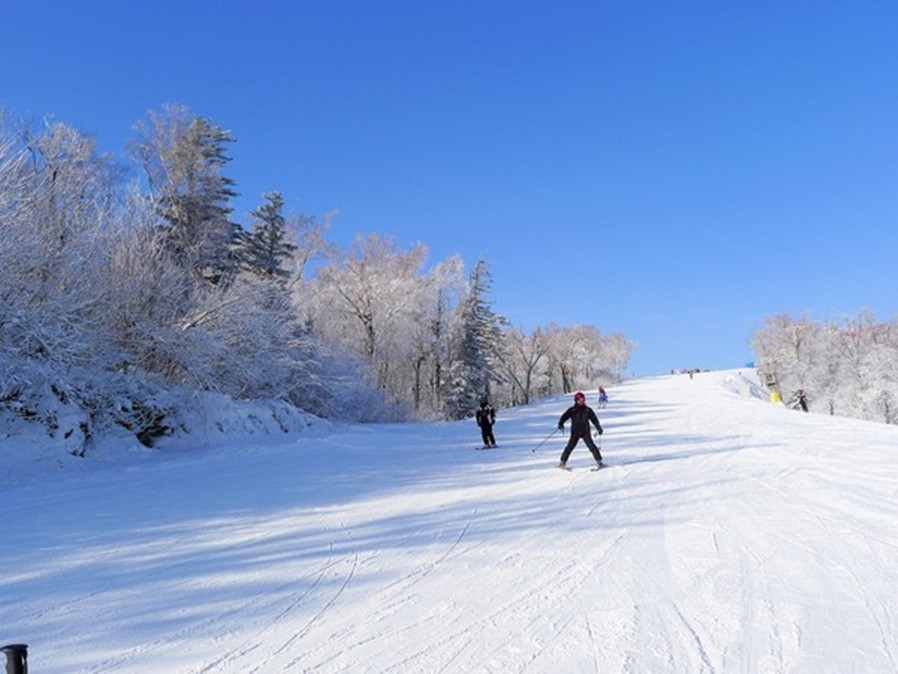 神农架激情森林滑雪(酒壶滑雪场)二日游