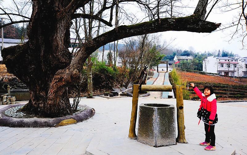 【资讯】竹山县宝丰镇龙井村有了游乐园