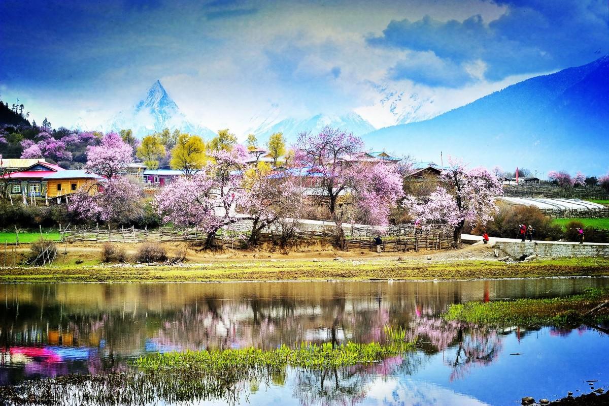 花开西藏 市内、林芝、羊湖卧飞8日游