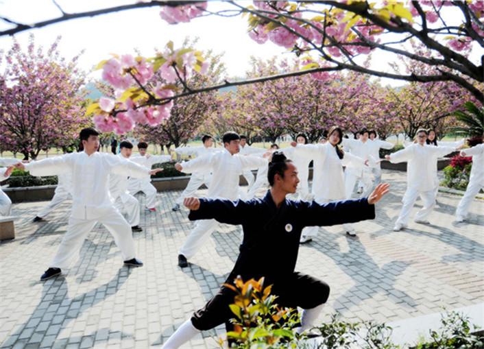 千人太极秀   湖北职院樱花树下摆盛宴