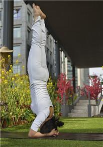 高难度瑜伽动作