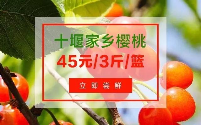 【资讯】汉江樱桃走出十堰 在武汉也可以吃到家乡樱桃