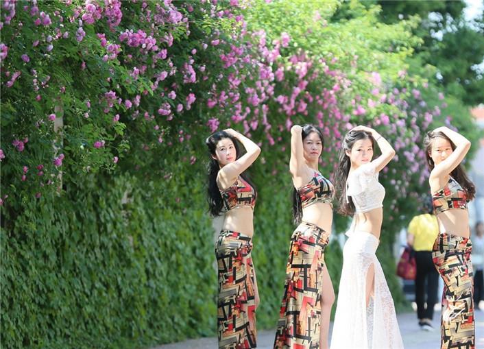 立夏时节 蔷薇花开