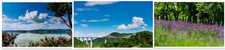 汉江湿地公园:美丽的生态画卷