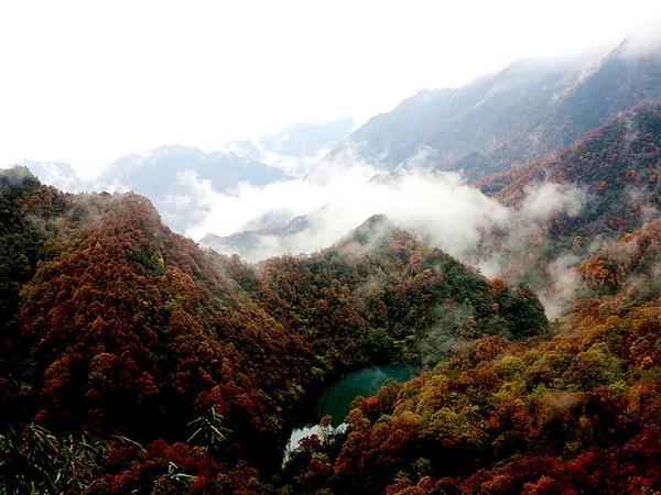 【资讯】堵河源自然保护区稳步推进基础设施建设