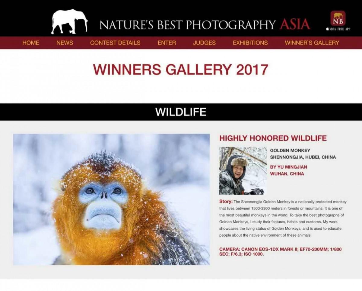 【资讯】这个中国人凭它斩获亚洲自然摄影最佳荣誉奖