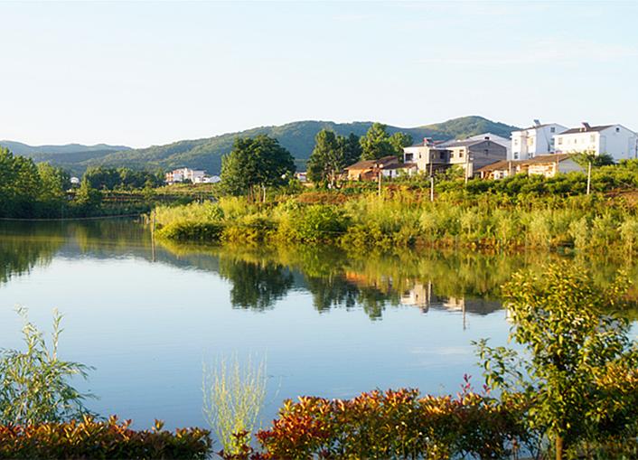 竹溪后花园    龙湖湿地公园