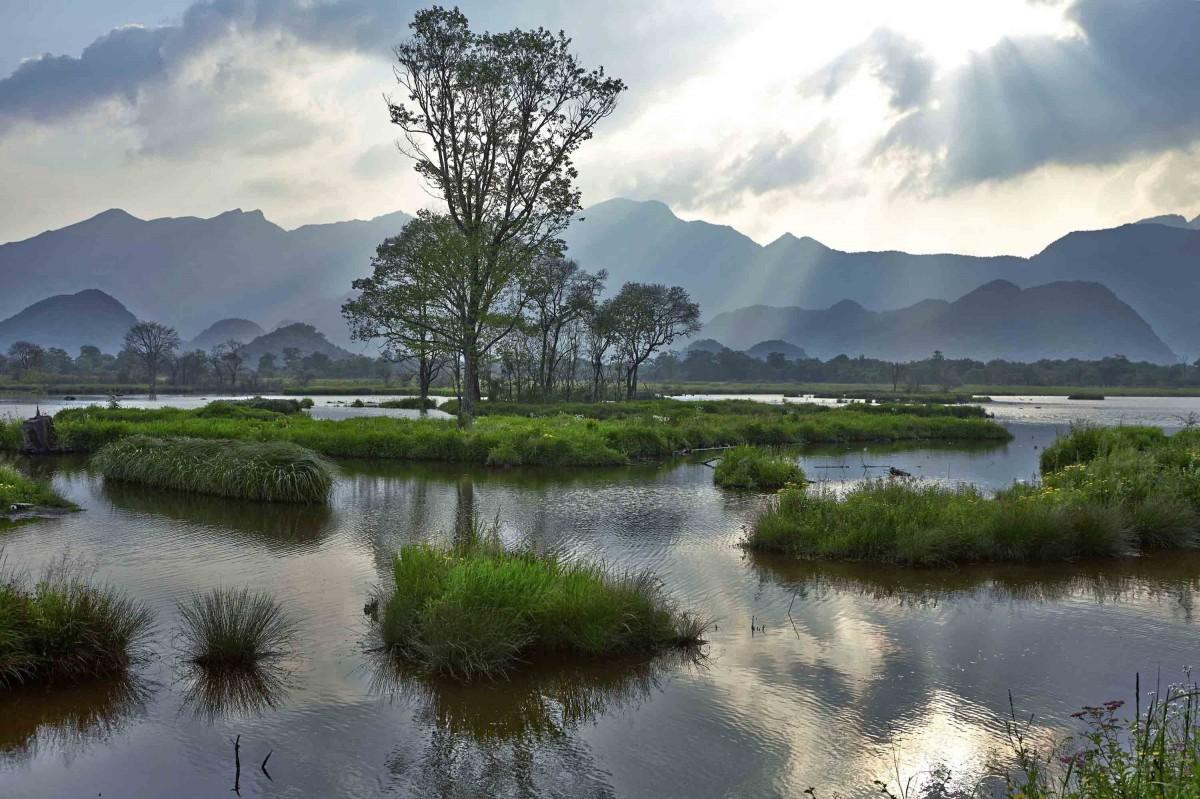【资讯】支持!湖北将对全省湿地进行全面保护