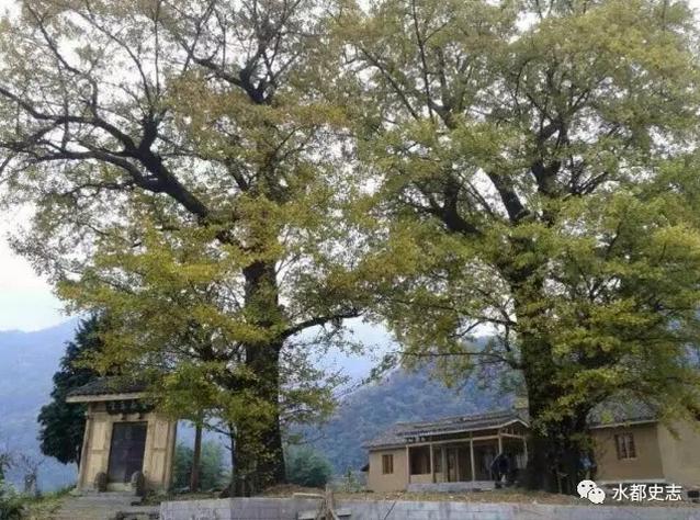 【资讯】武当山西神道景区——官山镇全真观遗址