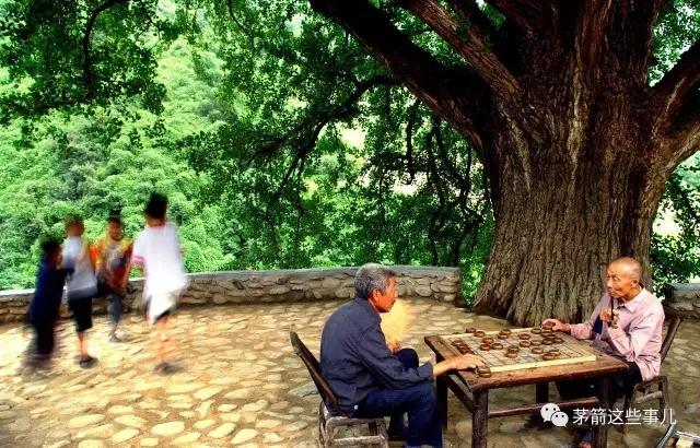 【资讯】茅箭那么多千百年的大宝贝,居然就在家门口