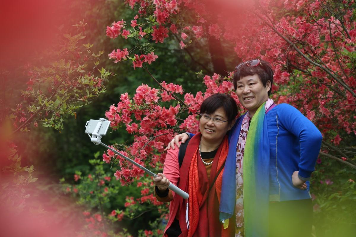 【资讯】张明:我的灵感来自茅箭漫山的杜鹃花