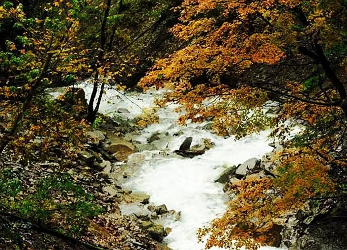 人少景美气候凉,湖北这19处登山步道任你选!