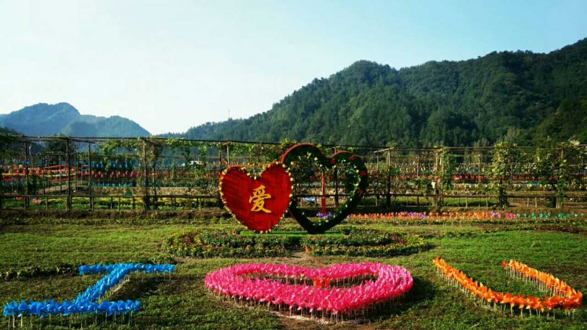 【资讯】茅箭区第三届菊花绿雕文化旅游节9月23日开幕