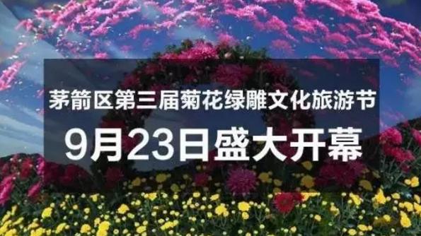 有福利!50万盆菊花将盛开十堰