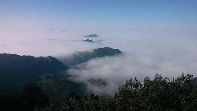 【资讯】金殿倒影、海马吐雾…近日武当山出现这些奇象