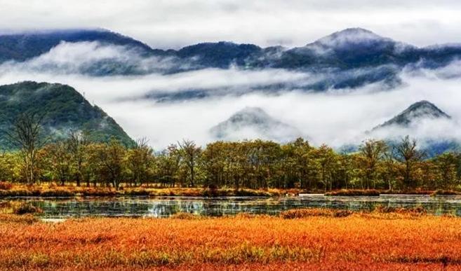 【资讯】这个美妙的季节到神农架,领略别具一格的秋景