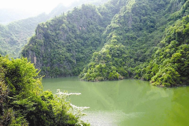 走进竹溪偏头山国家森林公园
