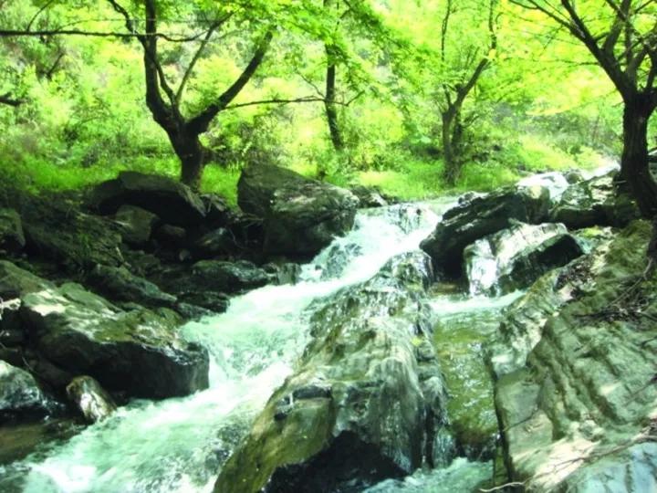 【资讯】房县藏着一个国家级公园,你知道在哪里吗?