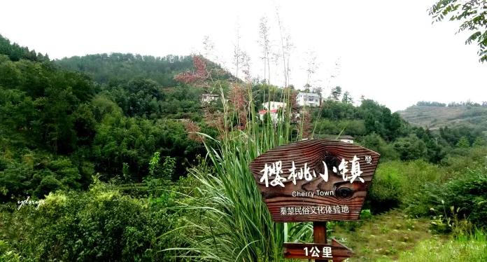 十堰郧阳樱桃沟