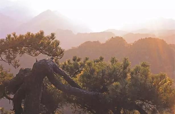 沧浪山国家森林公园