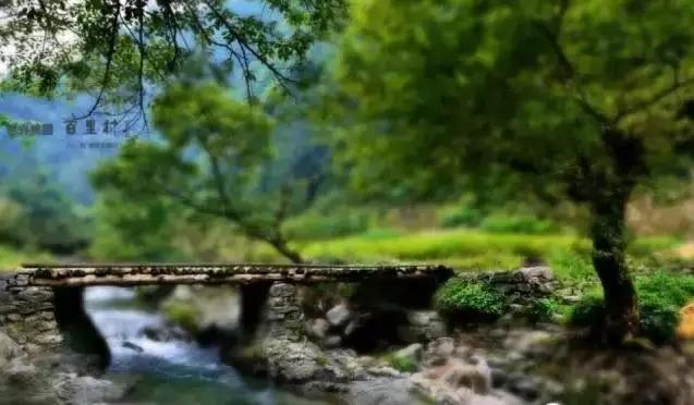 【资讯】十堰这些风景如画的地方是一个人旅行的天堂