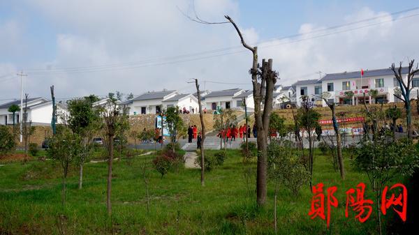 【资讯】郧阳鲍沟村易地扶贫安置点建成园林化广场
