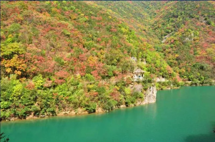 【资讯】感恩回馈!武汉洪山区居民可免票游五龙河