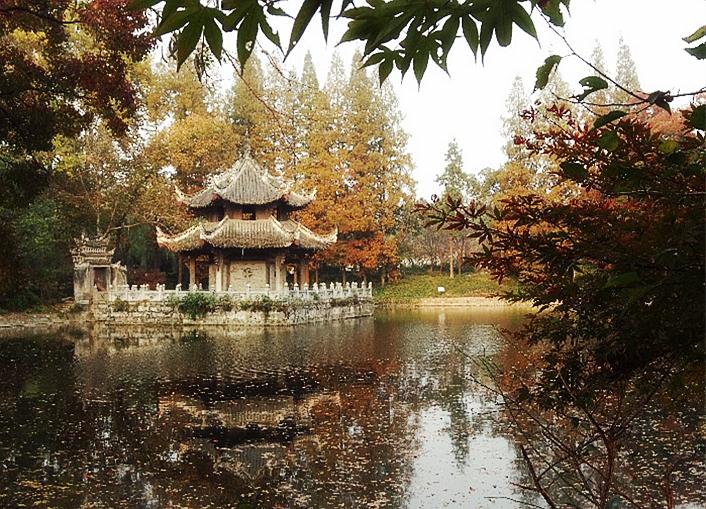 襄阳习家池——初冬暖日