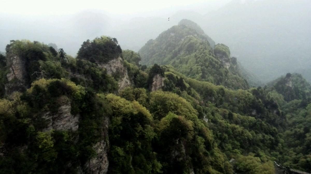 武当传说:清平山的故事