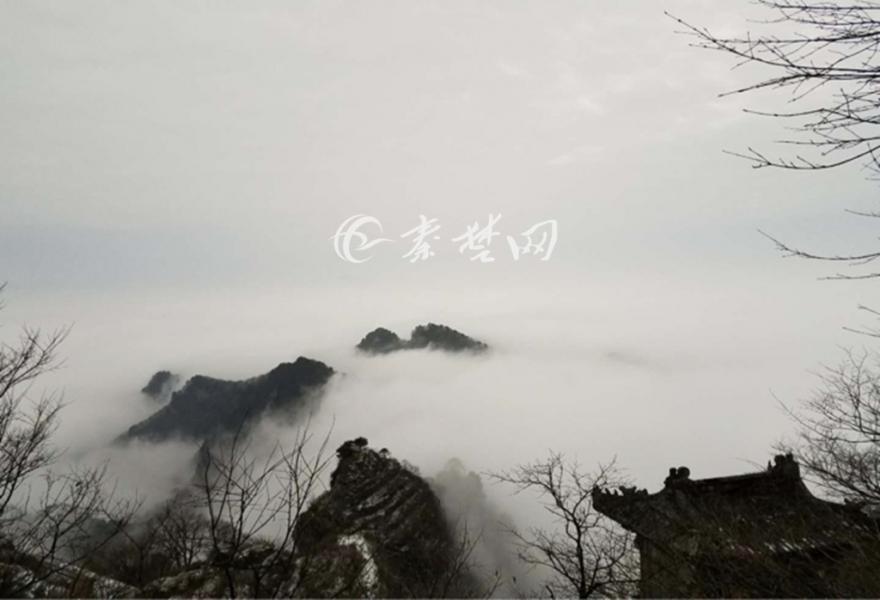 【资讯】如诗如画如仙境!今冬武当山初现云海美景