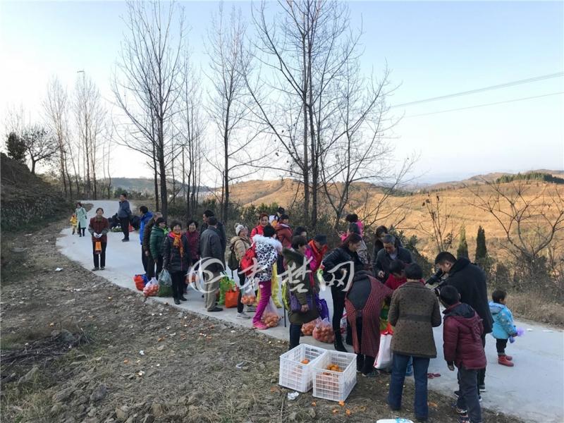 【资讯】周末采摘休闲游  拓宽乡村扶贫路