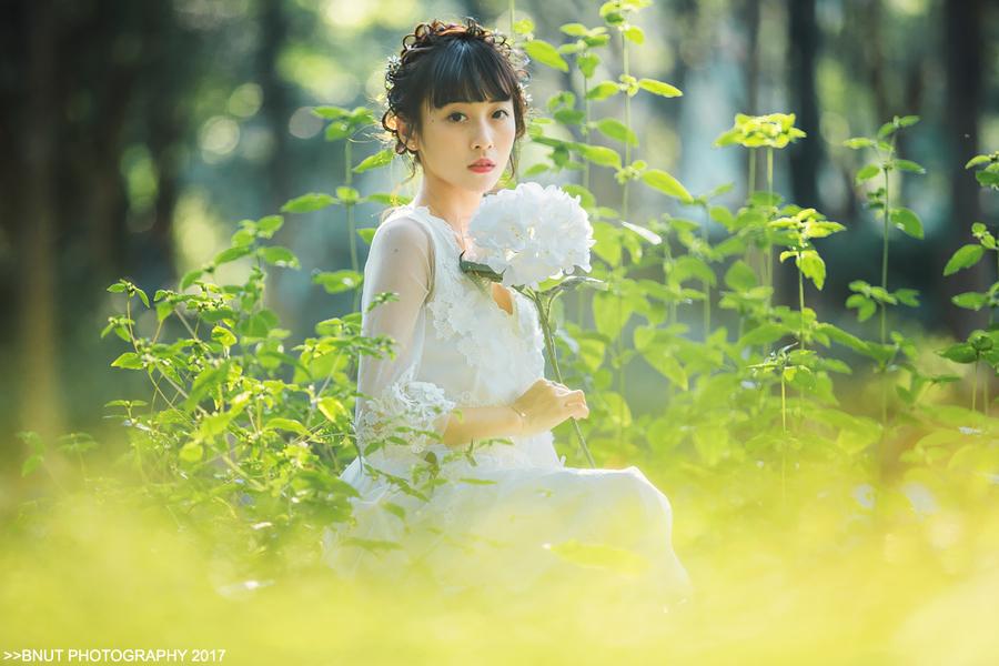 林中小仙女
