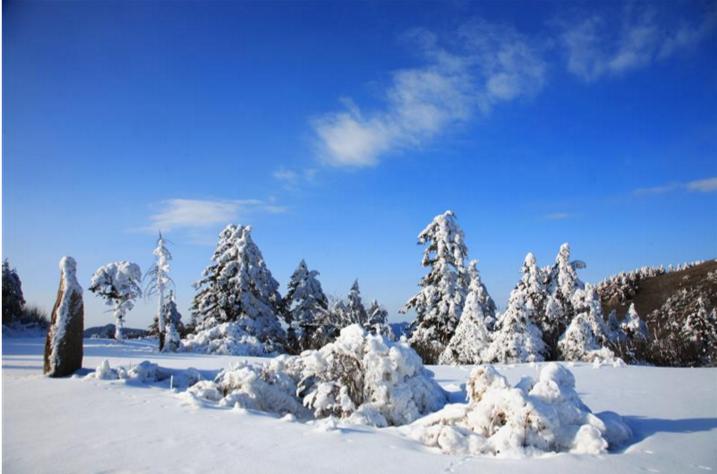 【资讯】好消息!大九湖景区面向全国免门票三个月
