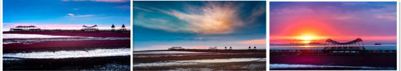 冬天的红海滩国家风景廊道