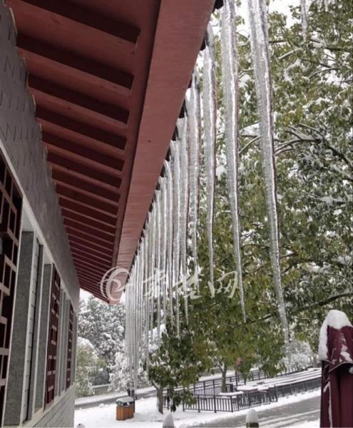 【资讯】游玩当心!武当山景区多处出现一人多高冰柱