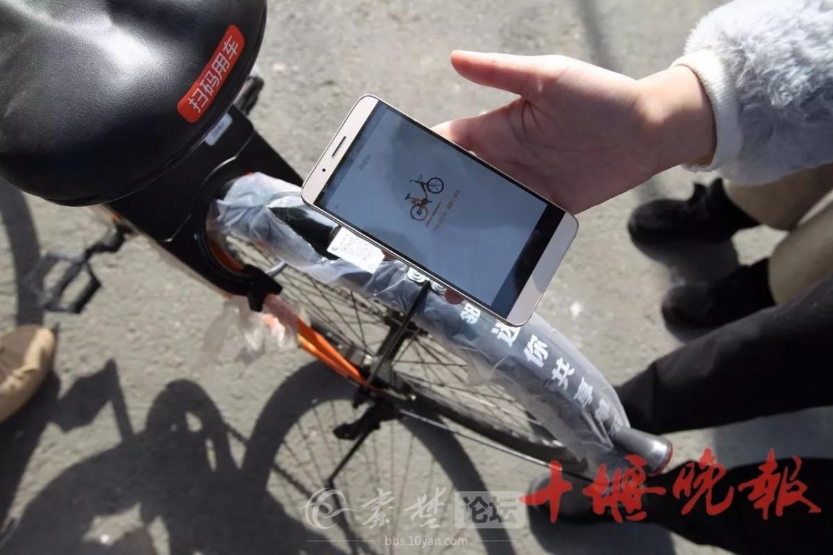 【资讯】共享单车连夜投放十堰,分布在这些地方!
