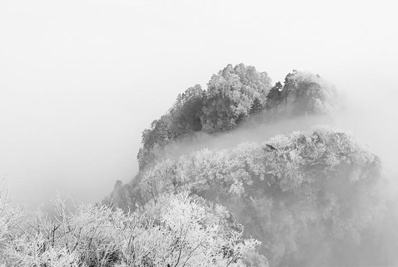 【资讯】武当山:雾凇与云海相伴  游客邂逅冰雪奇缘